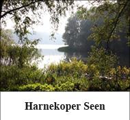 Harnekoper Seen