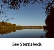 See Sternebeck
