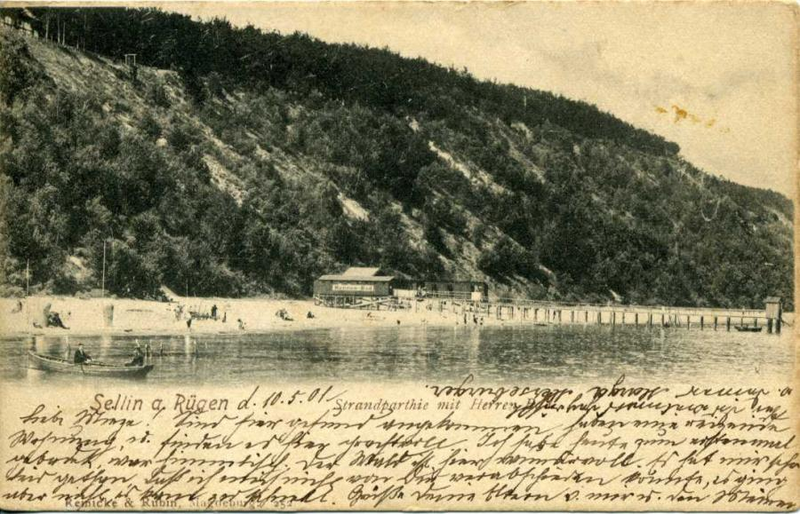 Sellin 1901