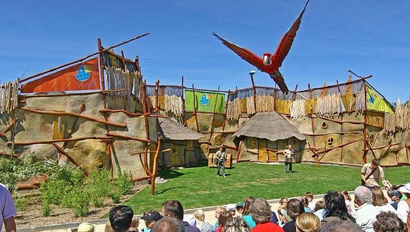 Show mit Tieren - Vogelpaark Marlow