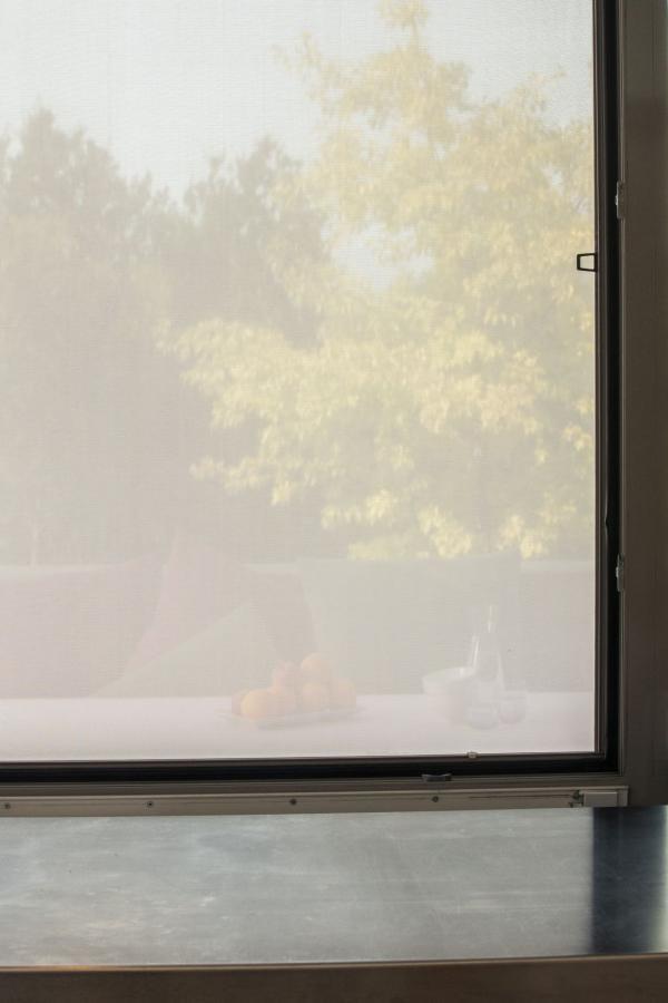 Sicht mit herkömmlichen Pollenschutzgewebe