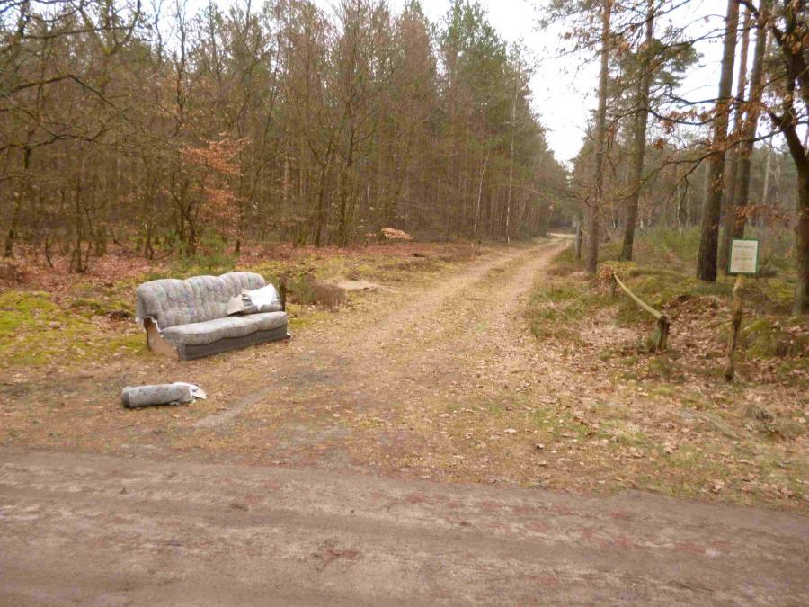 So far away ? Die Forst als Insomnationsbehörde ?