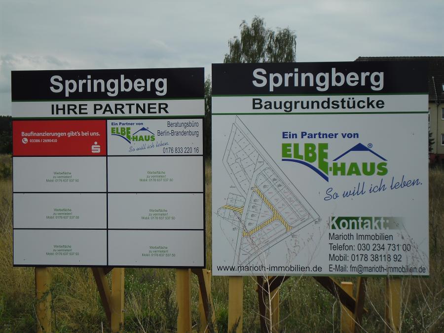 Springberg