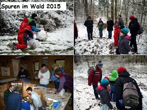 Spuren im Wald 2015