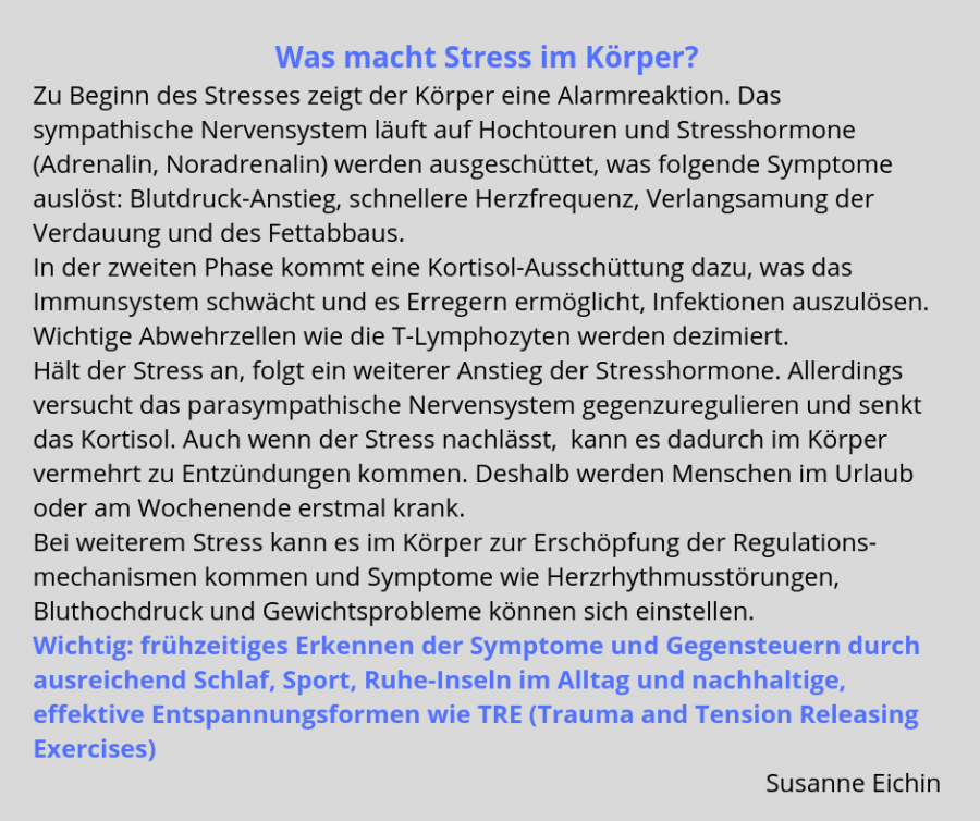 Was macht Stress im Körper?