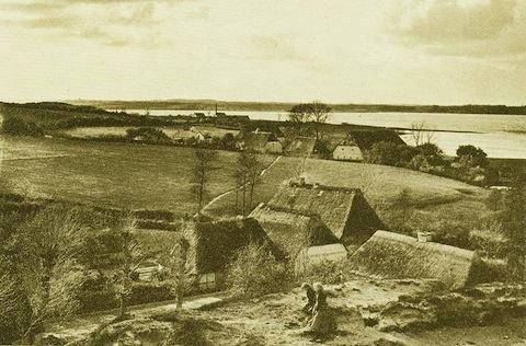 Stexwig 1894