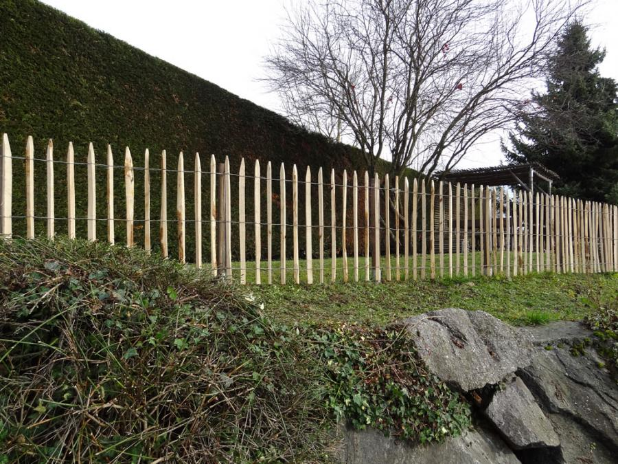 staketen gesägt 003