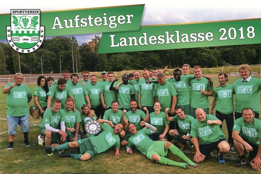 Kreismeister und Aufsteiger 2018: SV Burgwerben