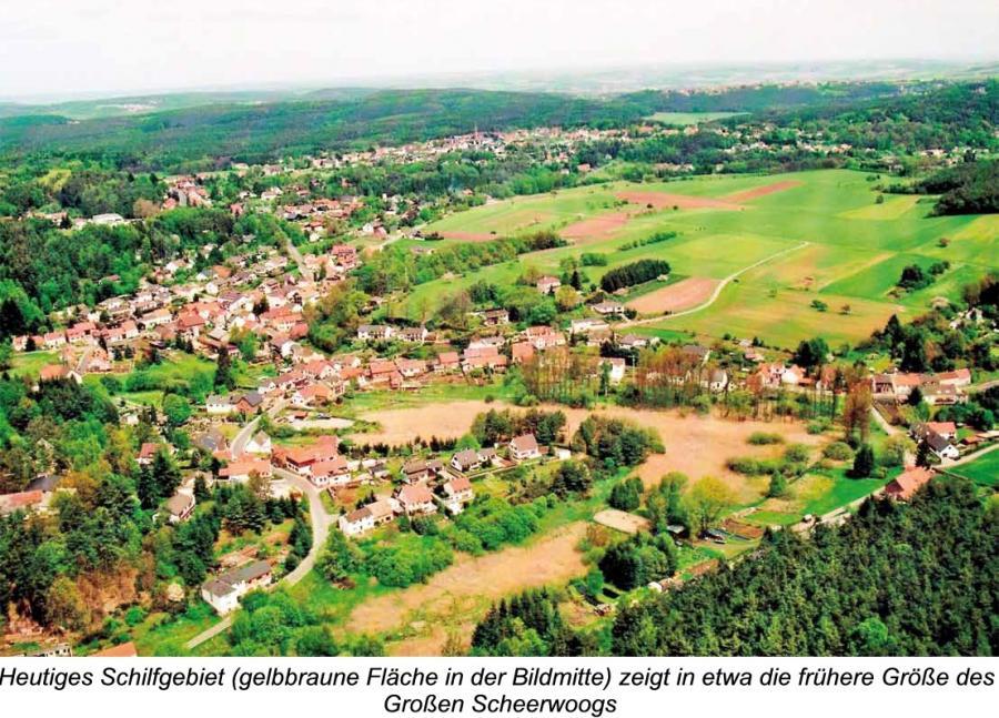 Heutiges Schilfgebiet (gelbbraune Fläche in der Bildmitte) zeigt in etwa die frühere Größe des Großen Scheerwoogs
