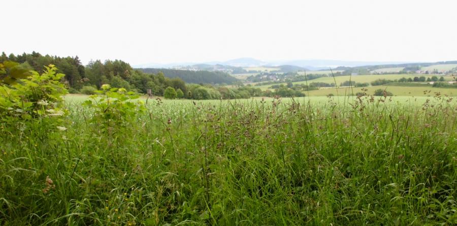 Mit der Olitätenkönigin ins Thüringer Kräuterland