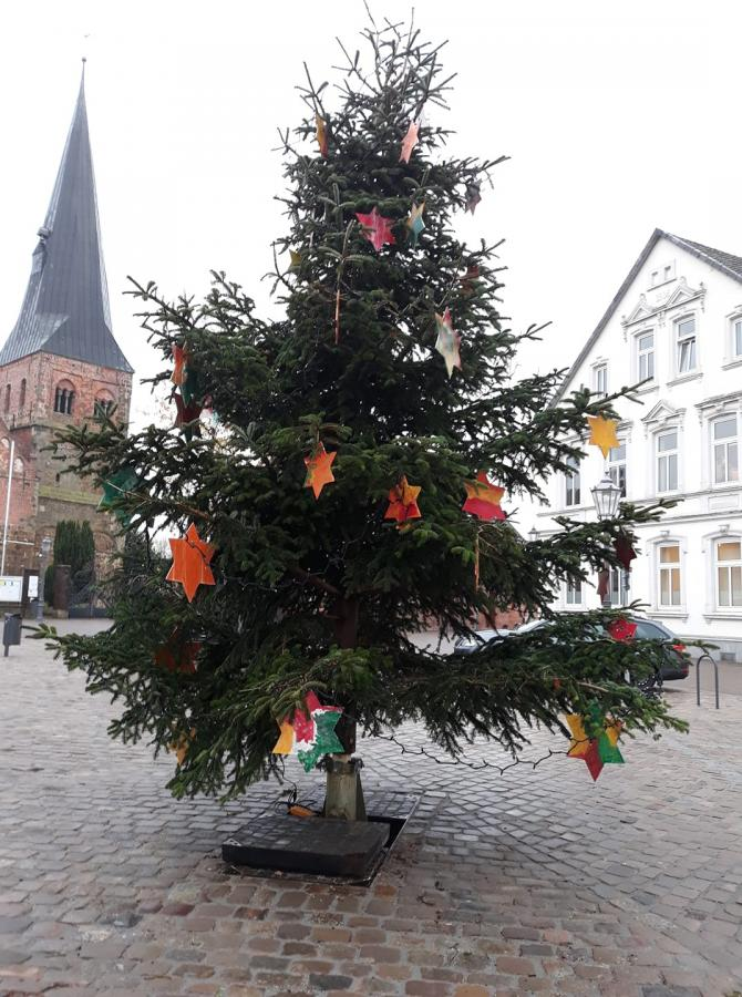 Tannenbaum auf dem Breithof