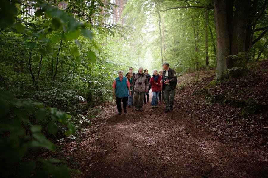 Naturpark Barnim Wandern_Foto: Heise