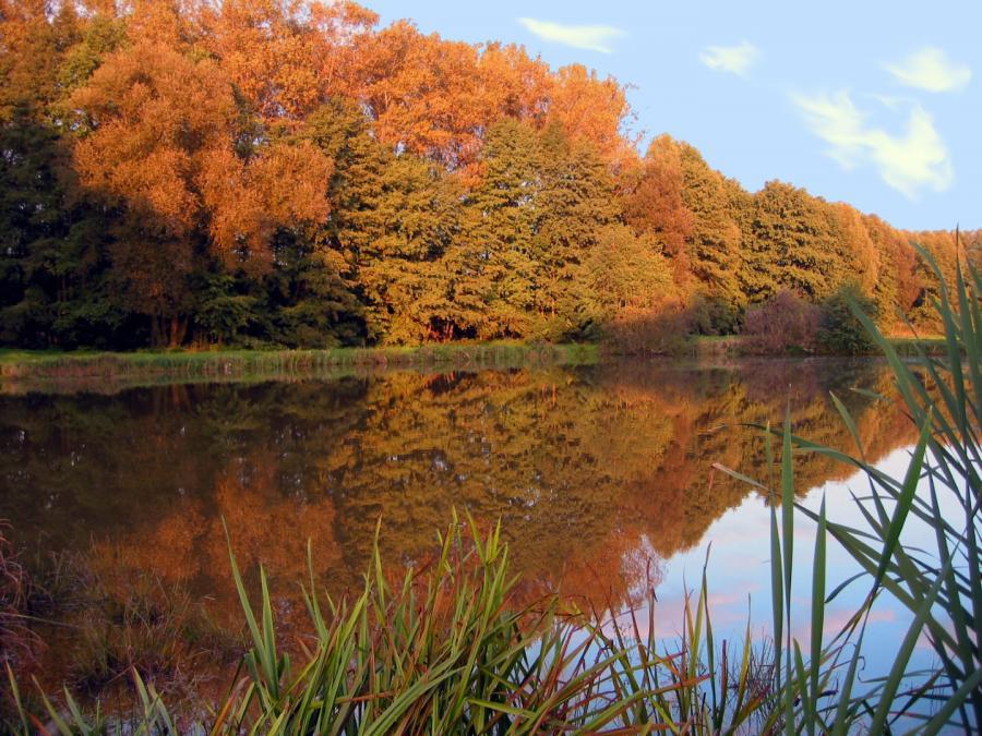 Thomas Baumann Herbstzauber Oktober