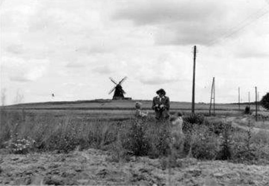 Am Salemer Weg, im Hintergrund die Windmühle Harder