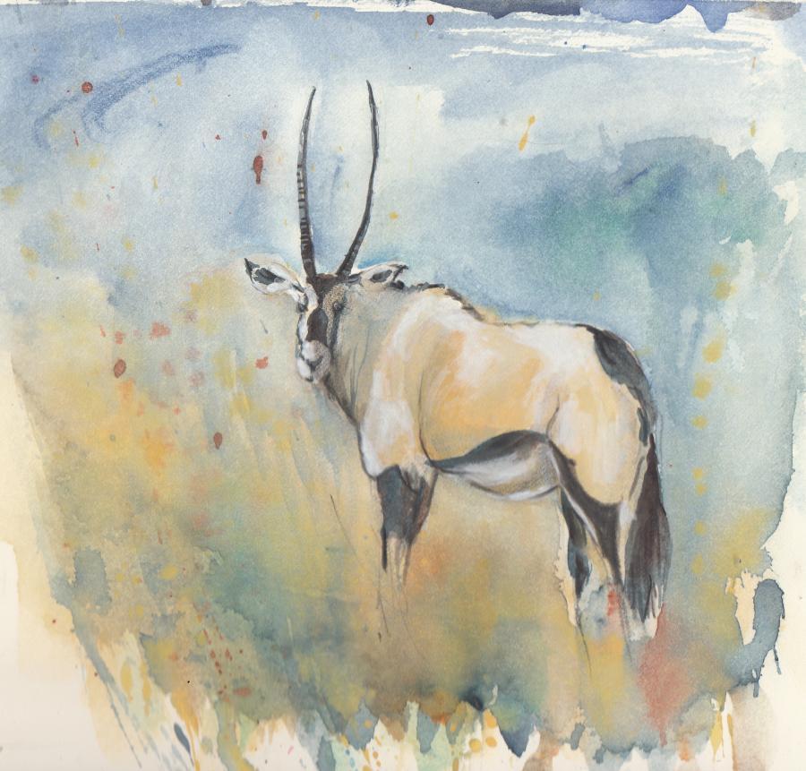 Tierstudie IV Oryx (Namibia)