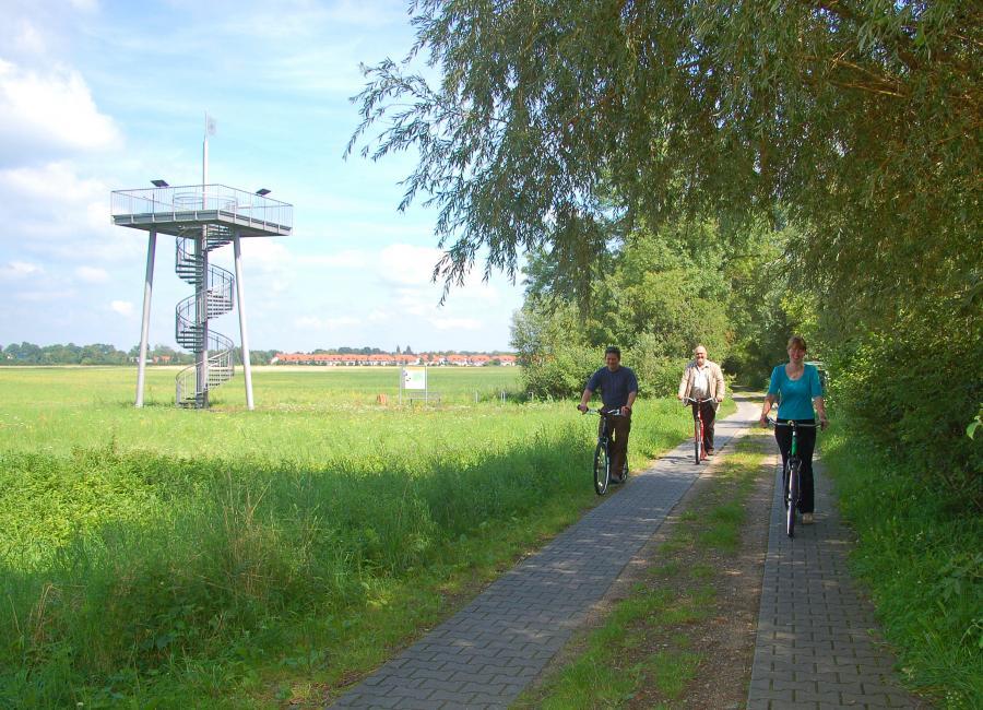 Mit dem Tretroller im Naturpark Dahme-Heideseen unterwegs