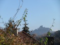 Burg Trifels_abu