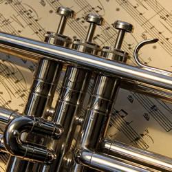 Trompetenunterricht Unterrichtsfach an der Musikschule des Music College Hannover