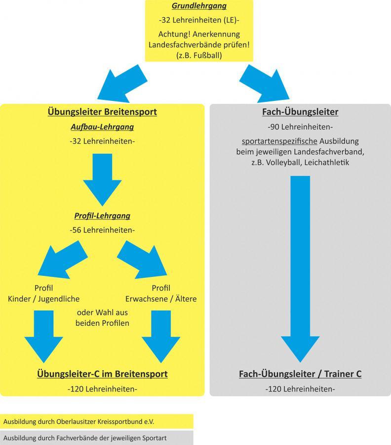 Übungsleiter: Struktur der Ausbildung