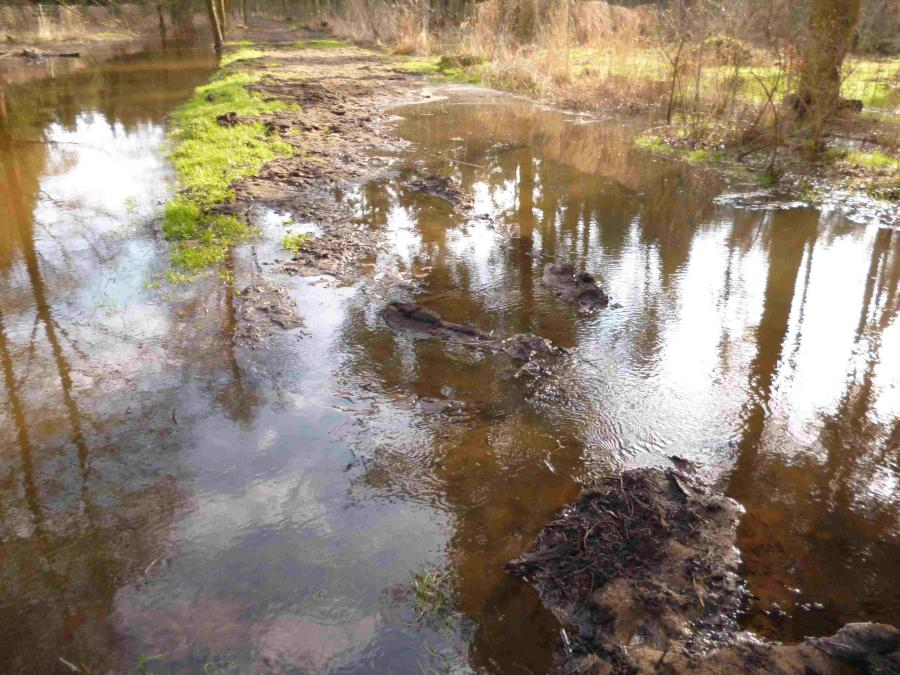 Zertsörte Uferbefestigung Bek - Überlauf
