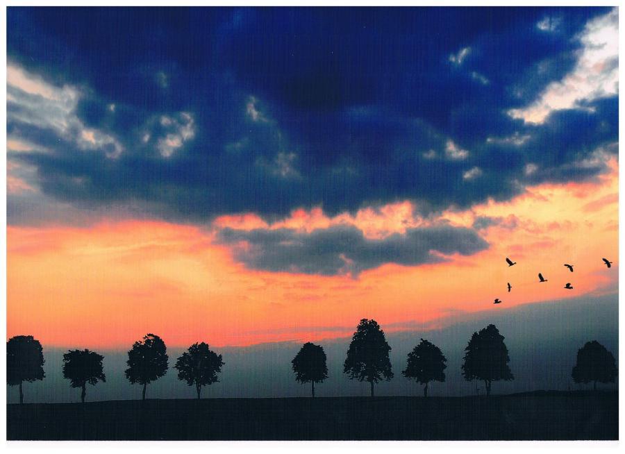 Unvergesserner Sonnenuntergang (Peter Kalliski)