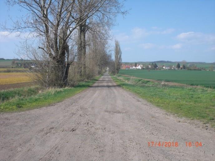 VBL Liedersdorf - Holdenstedt