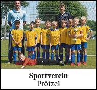 Sportverein Prötzel