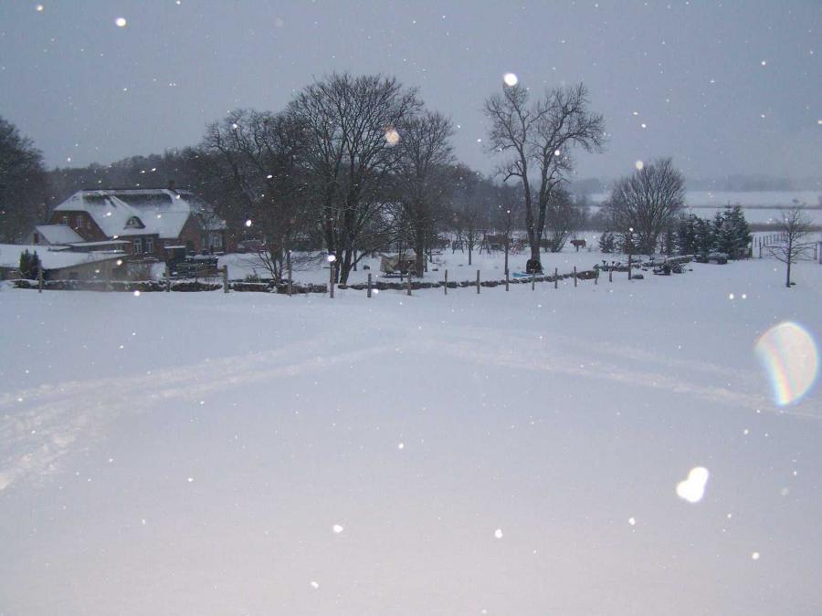 Winter 2013 Haus