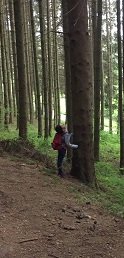 Waldprojekt 1