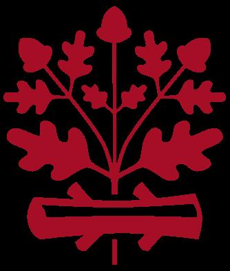 Langen (Hessen)