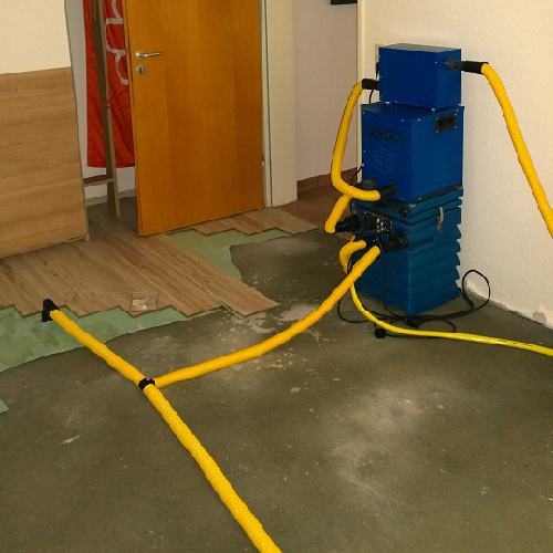 Wasserschadenbeseitigung in Schleswig-Holstein