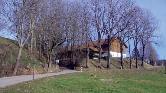Haldenwang - Steig - Berg - Börwang - Haldenwang