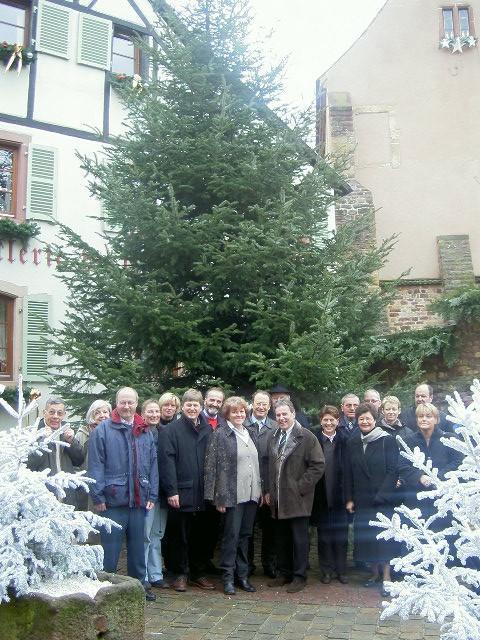 Weihnachtsbaum für Eguisheim