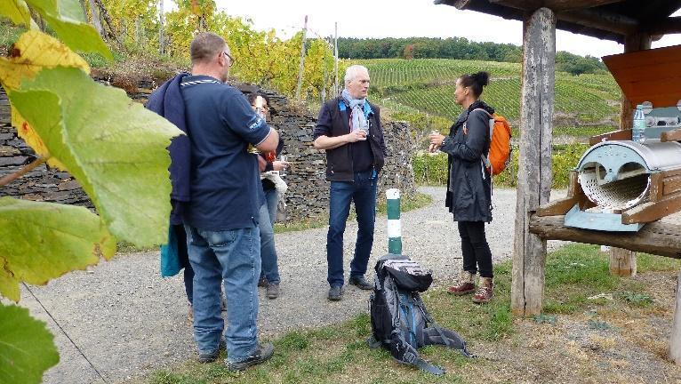 Wein-Wanderung 2