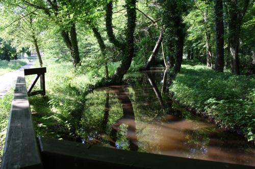 Zulauf zum Mühlenteich im Trebendorfer Park