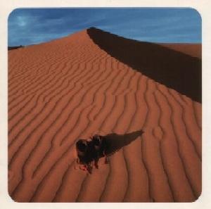 Wüste-1