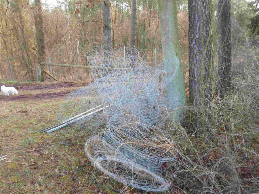 Zerstörter Wilddrahtzaun im Wald