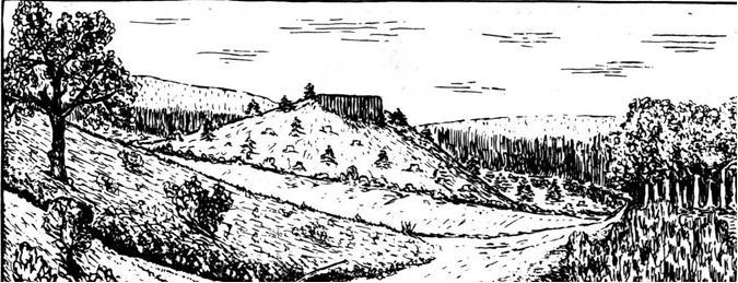 Der Danzeküppel im Gemeindewald