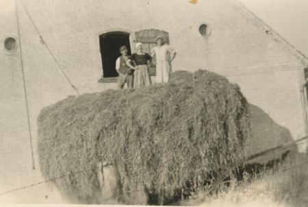 Heueinfahrt 1941