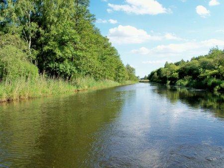 Recknitz - Auenwald zwischen Marlow und Bad Sülze