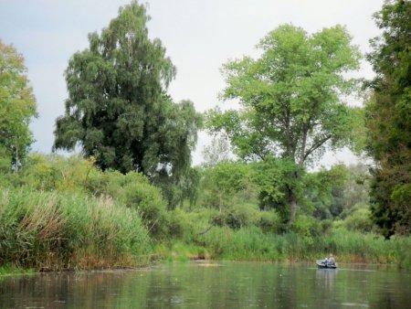 Recknitz - Auenwald vor Marlow