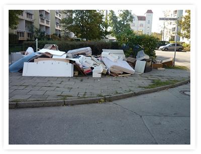 Müllablagerung Schloßpark