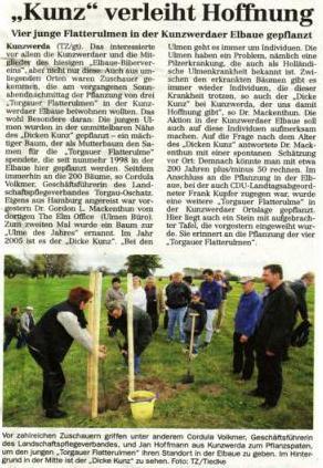 Pflanzung Ulme
