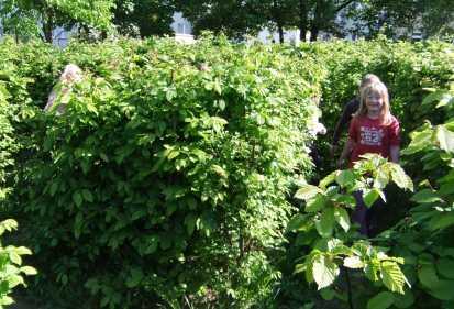 schulgarten_51_1305665399_Labyrinth.jpg