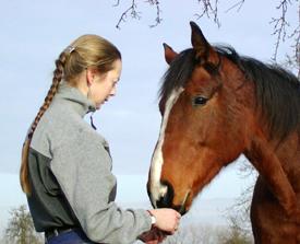 Horse & Personal Coaching