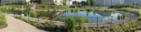 Teich Panorama