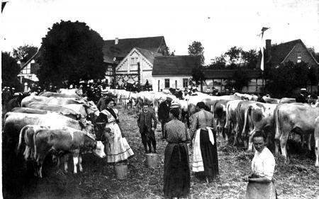 Viehmarkt2