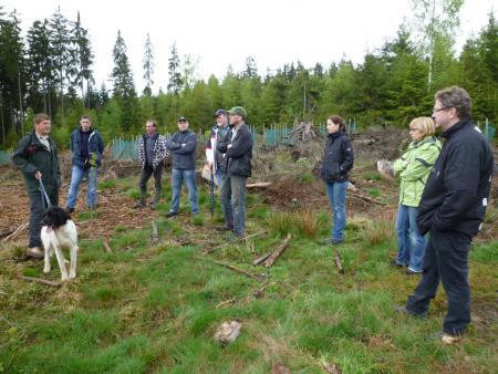 Waldbegang2012
