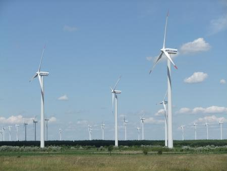 Windpark Klettwitz Sommer 2011