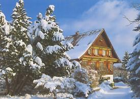 winter275x195.jpg
